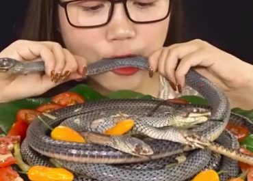 ვიდეო - როგორ ჭამს ჩინელი გოგო გველს