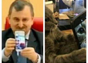 """""""კატებიც კი სწავლობენ, მხოლოდ ეს მთავრობა ვერ სწავლობს"""""""