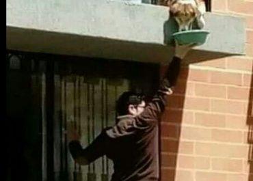 იტალია - ასე აჭმევს ყოველ დღე მეზობლის ძაღლს