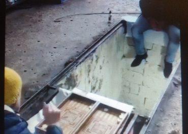 (ვიდეო) - ნარდის თამაშის მეთოდი კორონავირუსის პირობებში