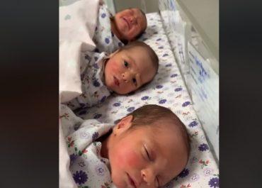 """(ვიდეო) - """"გაიცანით ლილე, სესილი და ანასტასია"""" - სამი ტყუპი და"""