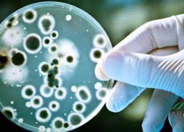 ჩინეთში კიდევ ერთმა დაავადებამ იფეთქა - ათასობით ინფიცირებული